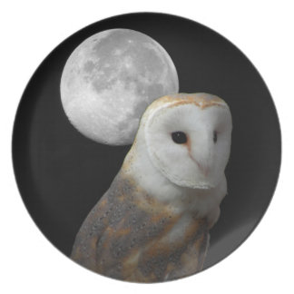 Barn Owl and moon plate