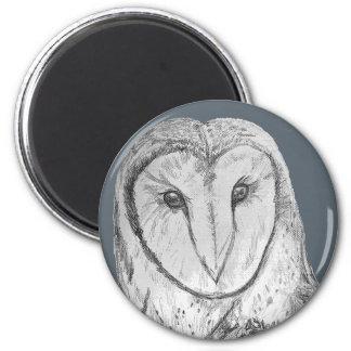 Barn Owl art magnet