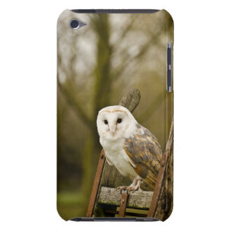 Barn Owl Barely There iPod Cover