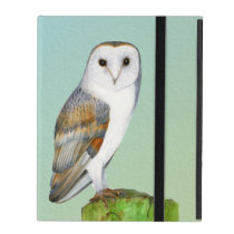 Barn Owl Bird Watercolor Painting Wildlife Artwork iPad Covers