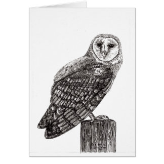 Barn Owl Blank Note Card