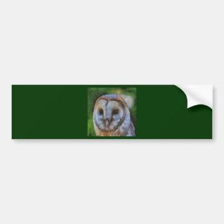 Barn Owl Bumper Sticker