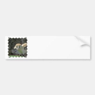 Barn Owl Bumper Sticker Car Bumper Sticker