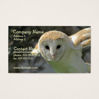 Barn Owl Business Card