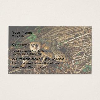 Barn Owl Business Card