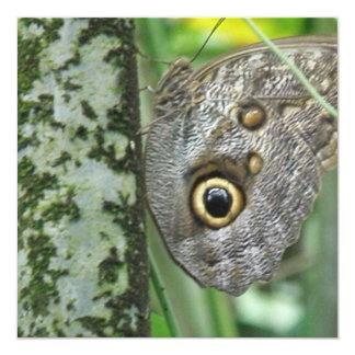 Barn Owl Butterfly Invitations