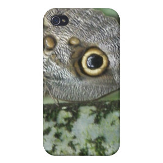 Barn Owl Butterfly iPhone Case iPhone 4 Covers