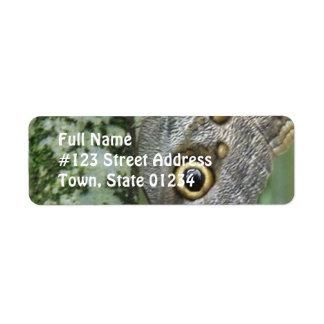 Barn Owl Butterfly Mailing Label Return Address Label