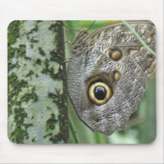 Barn Owl Butterfly Mouse Pad