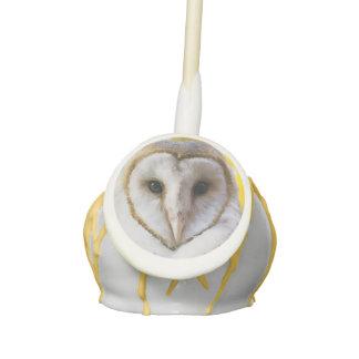 Barn Owl Cake Pops