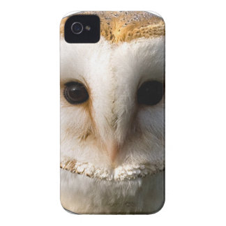 """""""Barn Owl"""" iPhone 4 Case-Mate Cases"""