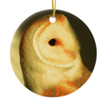 Barn owl ceramic ornament