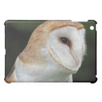 Barn Owl Closeup Photo iPad case