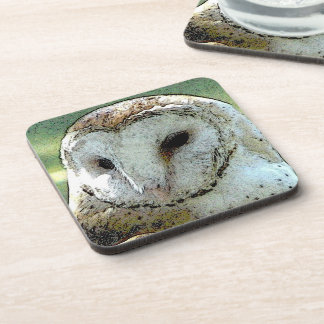 Barn Owl Coaster Set