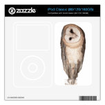 Barn owl decal for iPod classic