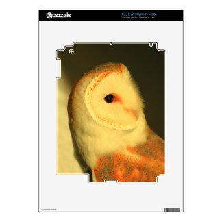 Barn owl decals for iPad 2
