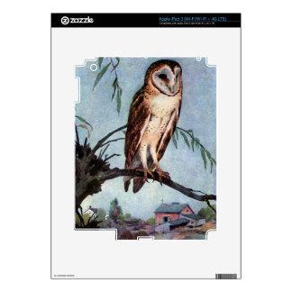 Barn Owl, Farmhouse and Barn iPad 3 Decal