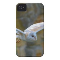 Barn Owl Flying iPhone 4 Case