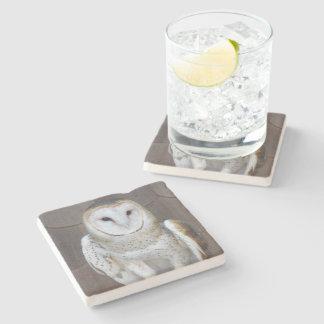 Barn Owl Stone Beverage Coaster