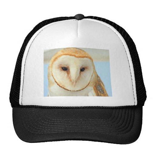 Barn owl hats