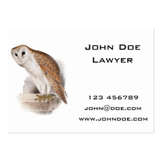 Barn Owl Illustration Large Business Card
