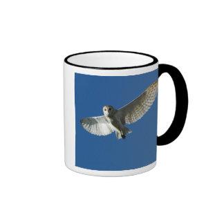 Barn Owl in Daytime Flight Coffee Mugs