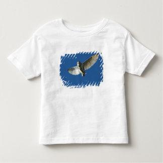 Barn Owl in Daytime Flight Toddler T-shirt