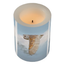 Barn Owl in Flight Flameless Candle
