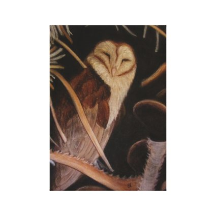 barn owl in pastel animal painting gallery wrap canvas