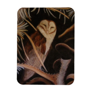 barn owl in pastel animal painting magnet