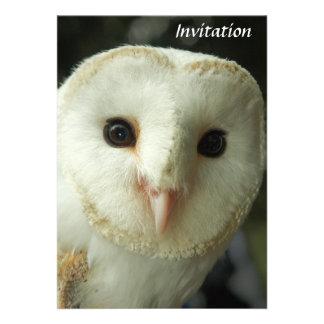 Barn Owl Invitation