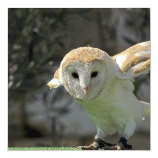 """Barn Owl Invitation 5.25"""" Square Invitation Card"""