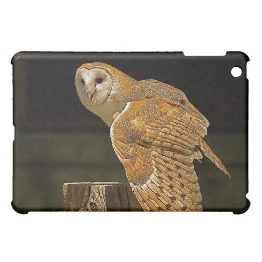 Barn Owl iPad Mini Covers