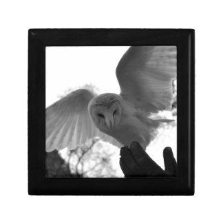 Barn Owl Jewelry Box
