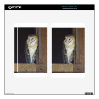 Barn Owl Kindle Fire Decals