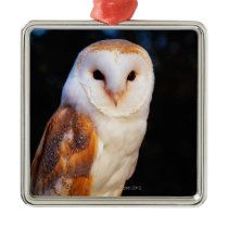 Barn Owl Metal Ornament