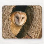 Barn Owl Mousepad