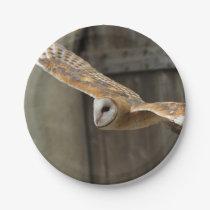 Barn Owl Paper Plate