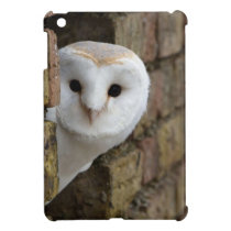 Barn Owl Peeks Out Cover For The iPad Mini