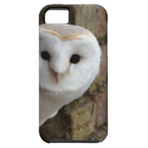 Barn Owl Peeks Out iPhone SE/5/5s Case