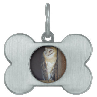 Barn Owl Pet ID Tag