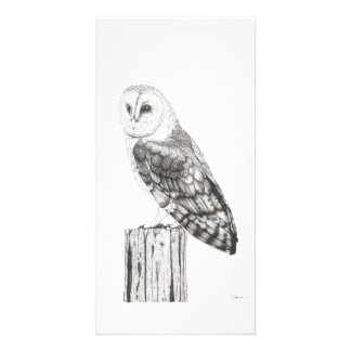 Barn Owl - Photo card