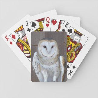 Barn Owl Photo Deck Of Cards