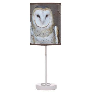 Barn Owl Photo Desk Lamp