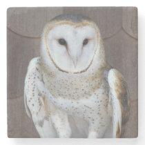 Barn Owl Photo Stone Coaster