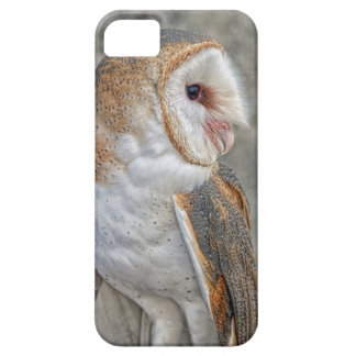 Barn Owl Profile iPhone 5 Covers