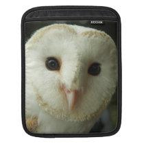 Barn Owl Rickshaw Sleeve