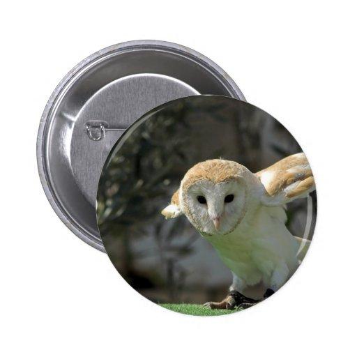 Barn Owl Round Button