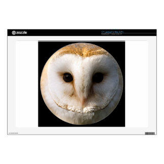 """""""Barn owl"""" Decal For Laptop"""