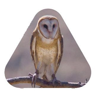 Barn Owl speaker